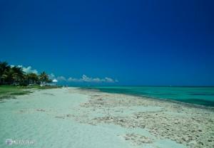 Дивное побережье Мексиканского залива