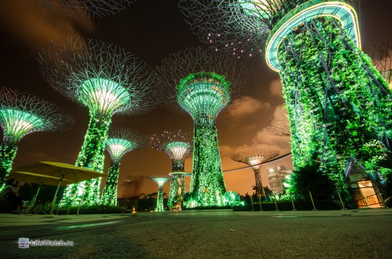 Волшебные деревья Сингапура
